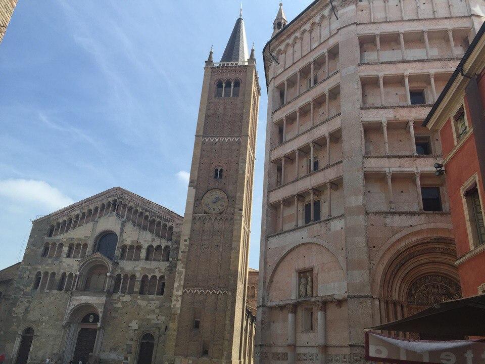 Parma (7)