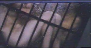 vlcsnap-2012-04-13-10h38m07s0